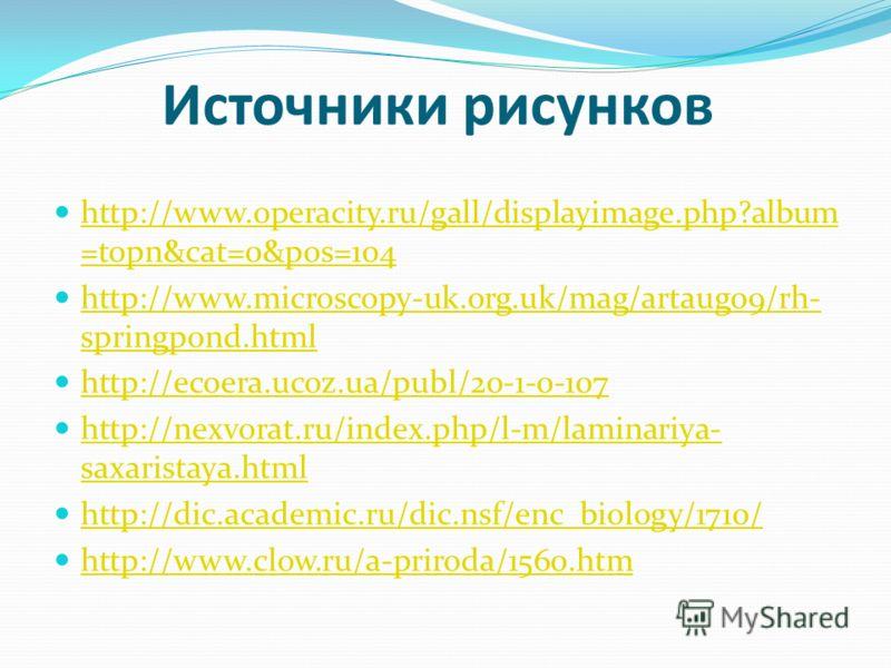 Источники рисунков http://www.operacity.ru/gall/displayimage.php?album =topn&cat=0&pos=104 http://www.operacity.ru/gall/displayimage.php?album =topn&cat=0&pos=104 http://www.microscopy-uk.org.uk/mag/artaug09/rh- springpond.html http://www.microscopy-