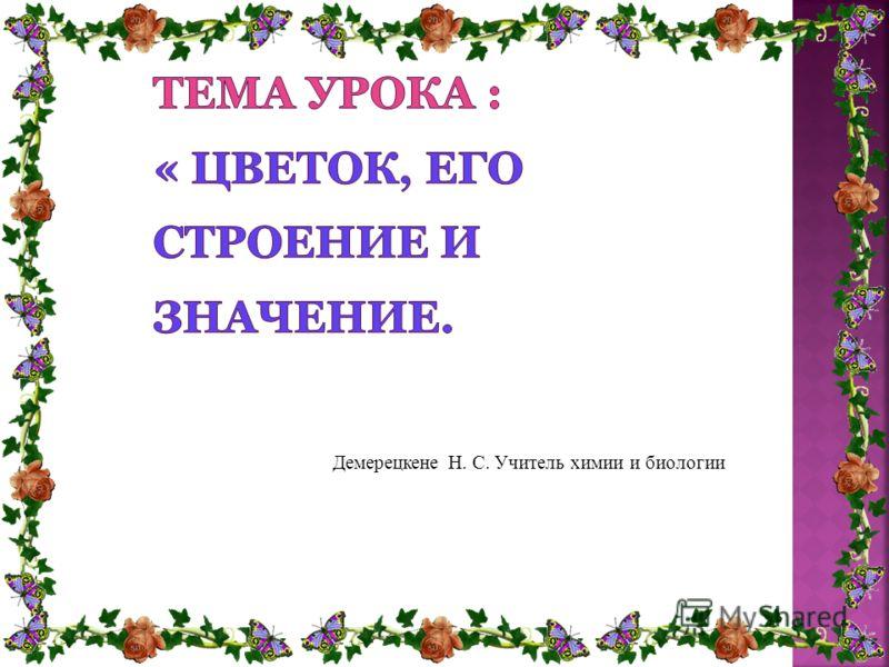 Демерецкене Н. С. Учитель химии и биологии
