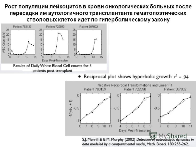 Рост популяции лейкоцитов в крови онкологических больных после пересадки им аутологичного трансплантанта гематопоэтических стволовых клеток идет по гиперболическому закону