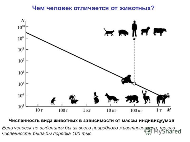Численность вида животных в зависимости от массы индивидуумов Если человек не выделился бы из всего природного животного мира, то его численность была бы порядка 100 тыс. Чем человек отличается от животных?