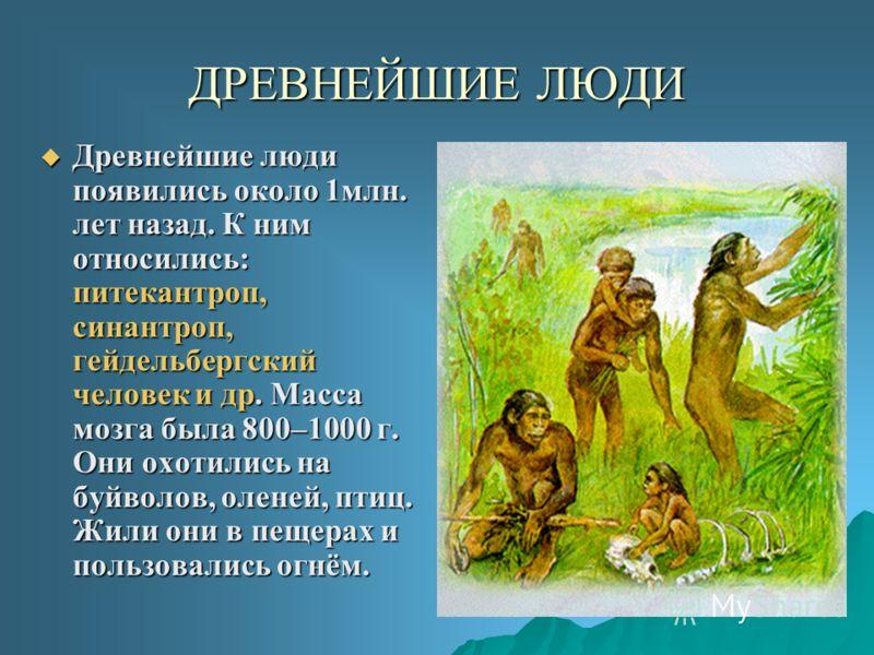 ДРЕВНЕЙШИЕ ЛЮДИ Древнейшие люди появились около 1млн. лет назад. К ним относились: питекантроп, синантроп, гейдельбергский человек и др. Масса мозга была 800–1000 г. Они охотились на буйволов, оленей, птиц. Жили они в пещерах и пользовались огнём. Др