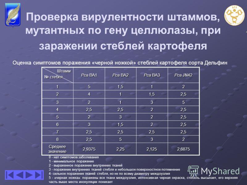 Проверка вирулентности штаммов, мутантных по гену целлюлазы, при заражении стеблей картофеля Штамм стебля стебля Pca BA1 Pca BA2 Pca BA3 Pca JN42 151,512 2411,52,5 32135 42,52,522,5 52322,5 631,522,5 72,52,52,52,5 82,5532 Среднее значение 2,93752,252
