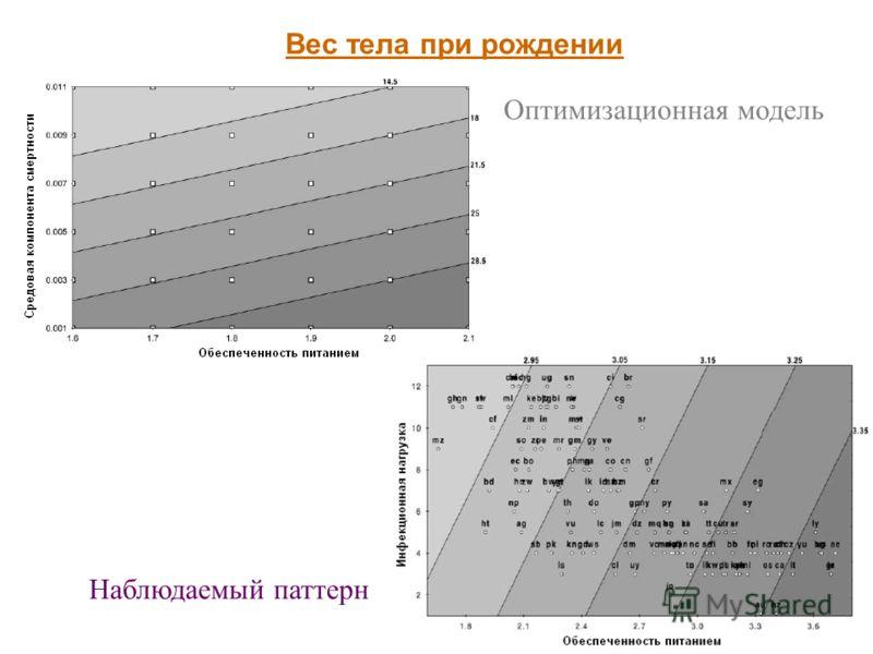 19 Вес тела при рождении Оптимизационная модель Наблюдаемый паттерн