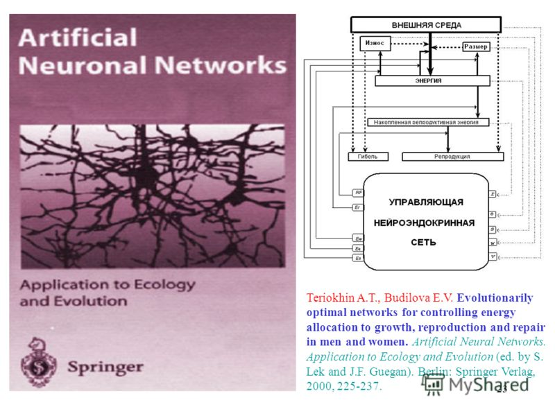 23 Teriokhin A.T., Budilova E.V. Evolutionarily optimal networks for controlling energy allocation to growth, reproduction and repair in men and women. Artificial Neural Networks. Application to Ecology and Evolution (ed. by S. Lek and J.F. Guegan).