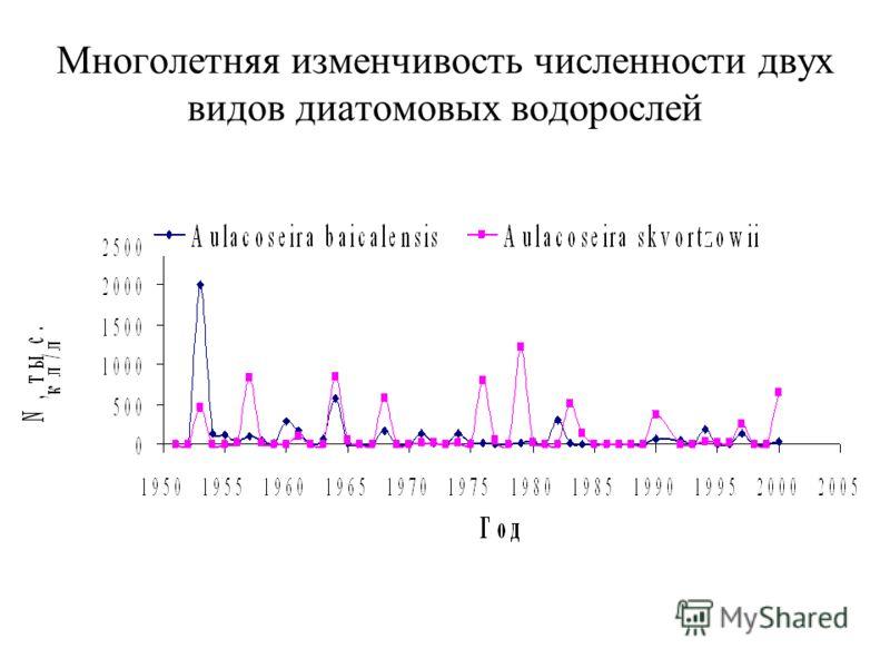 Многолетняя изменчивость численности двух видов диатомовых водорослей