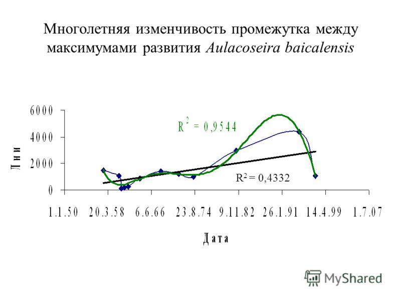 Многолетняя изменчивость промежутка между максимумами развития Aulacoseira baicalensis R 2 = 0,4332
