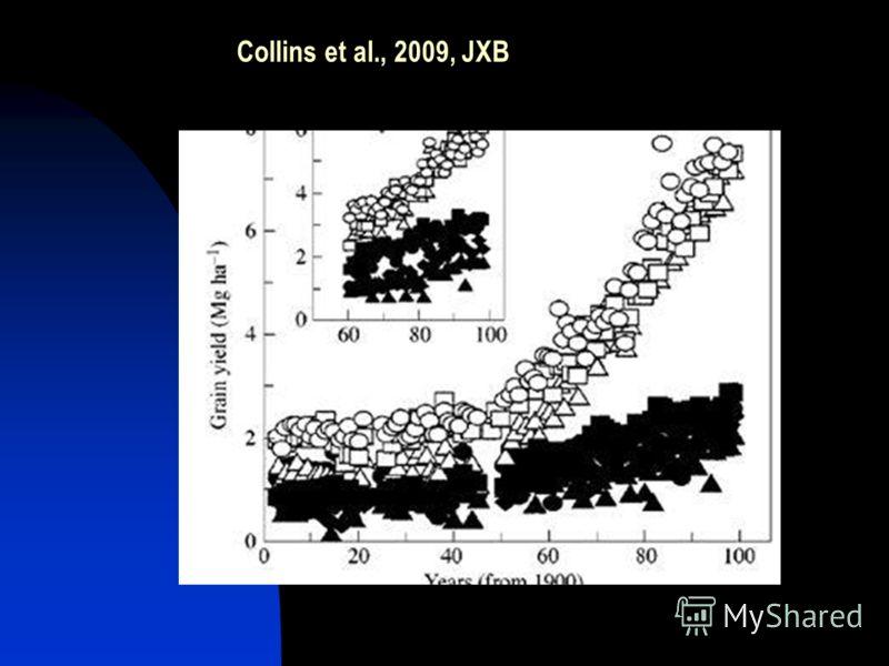 Collins et al., 2009, JXB
