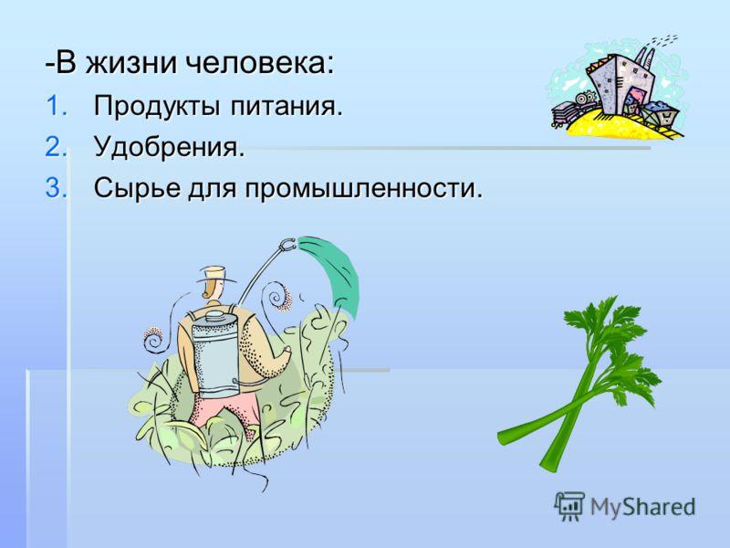 -В жизни человека: 1.Продукты питания. 2.Удобрения. 3.Сырье для промышленности.