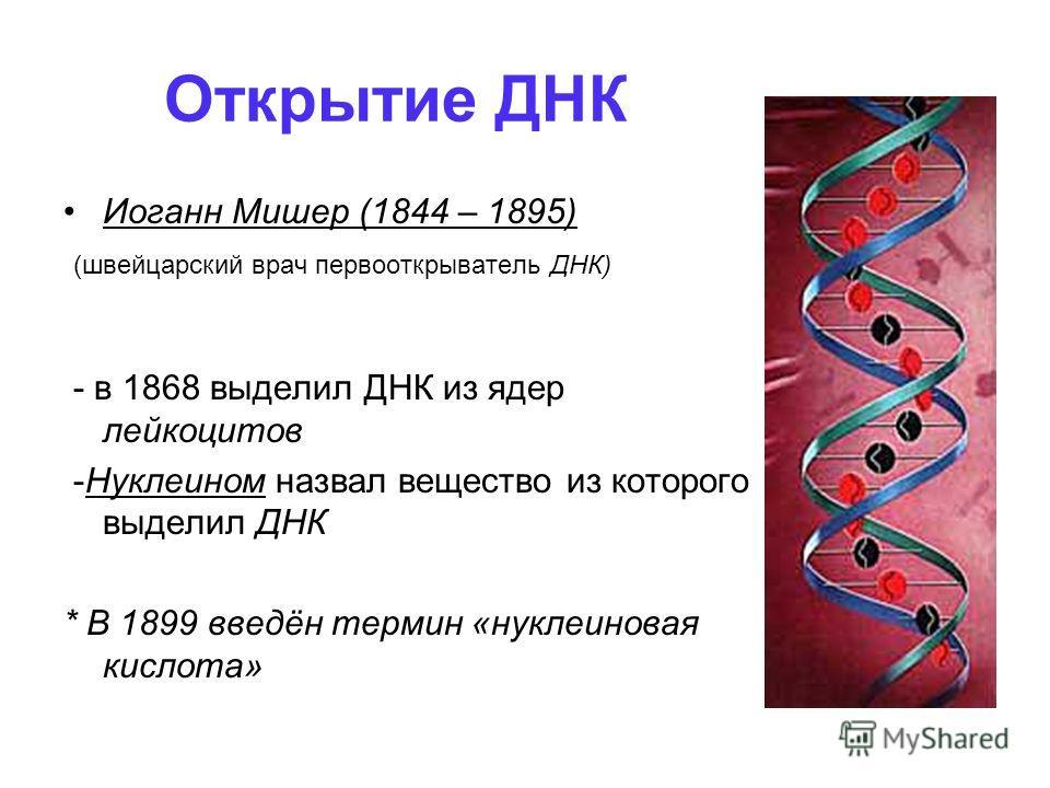 Открытие ДНК Иоганн Мишер (1844 – 1895) (швейцарский врач первооткрыватель ДНК) - в 1868 выделил ДНК из ядер лейкоцитов -Нуклеином назвал вещество из которого выделил ДНК * В 1899 введён термин «нуклеиновая кислота»