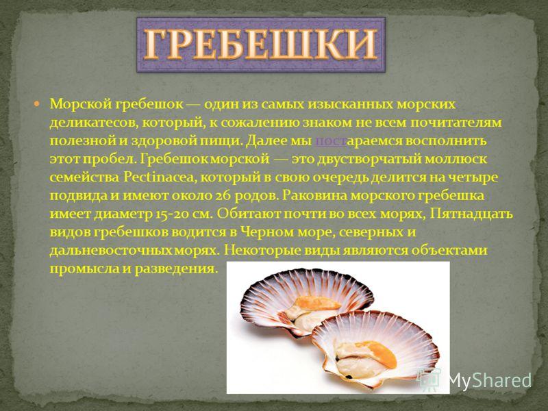 Морской гребешок один из самых изысканных морских деликатесов, который, к сожалению знаком не всем почитателям полезной и здоровой пищи. Далее мы постараемся восполнить этот пробел. Гребешок морской это двустворчатый моллюск семейства Pectinacea, кот