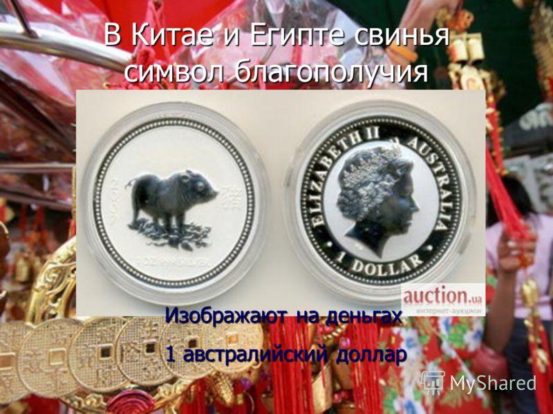 Домашние животные 7 кл. Баштанник Н.Е.5 Свиньи