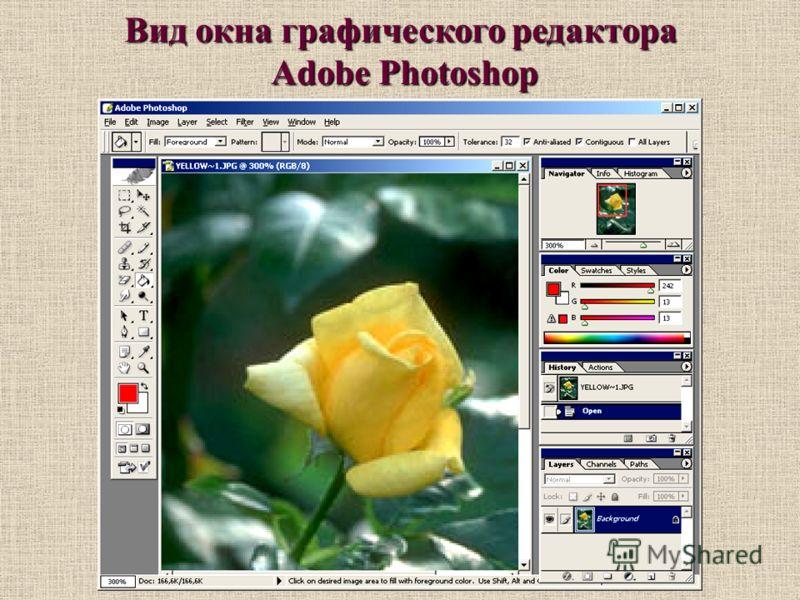 Вид окна графического редактора Adobe Photoshop