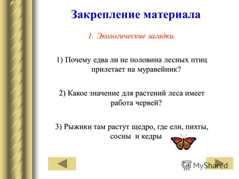 Закрепление материала 1.Экологические загадки. 1)Почему едва ли не половина лесных птиц прилетает на муравейник? 2) Какое значение для растений леса имеет работа червей? 3) Рыжики там растут щедро, где ели, пихты, сосны и кедры