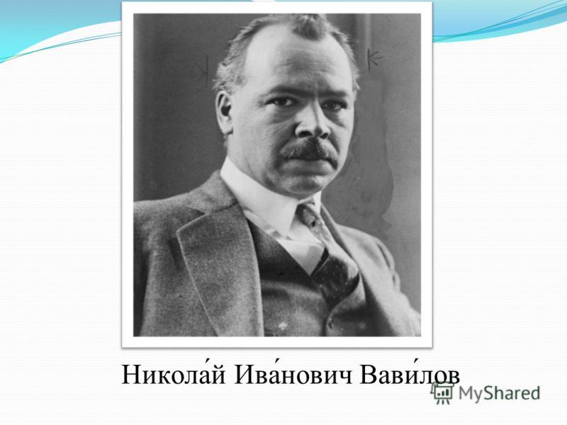 Никола́й Ива́нович Вави́лов