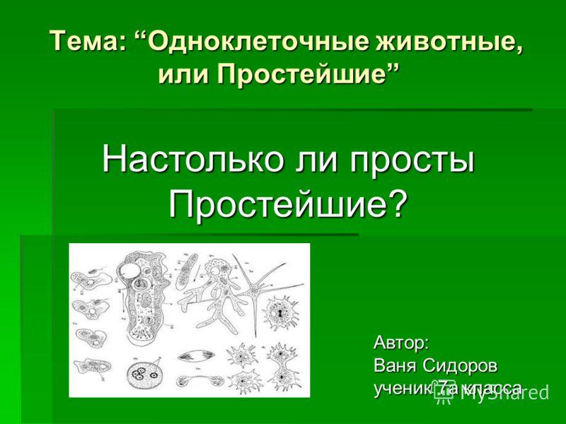 Тема: Одноклеточные животные, или Простейшие Автор: Ваня Сидоров ученик 7а класса Настолько ли просты Простейшие?