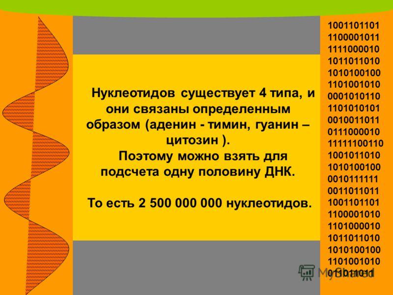 Нуклеотидов существует 4 типа, и они связаны определенным образом (аденин - тимин, гуанин – цитозин ). Поэтому можно взять для подсчета одну половину ДНК. То есть 2 500 000 000 нуклеотидов. 1001101101 1100001011 1111000010 1011011010 1010100100 11010