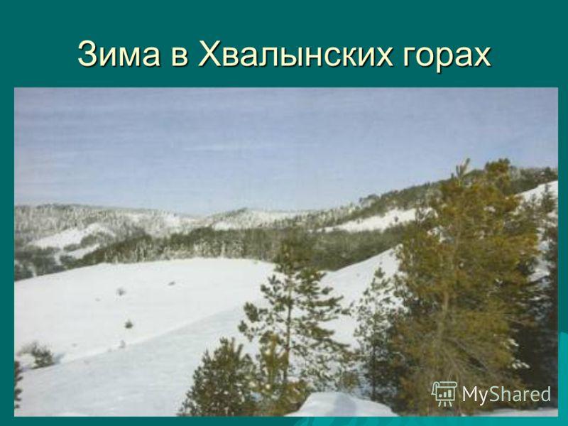 Зима в Хвалынских горах