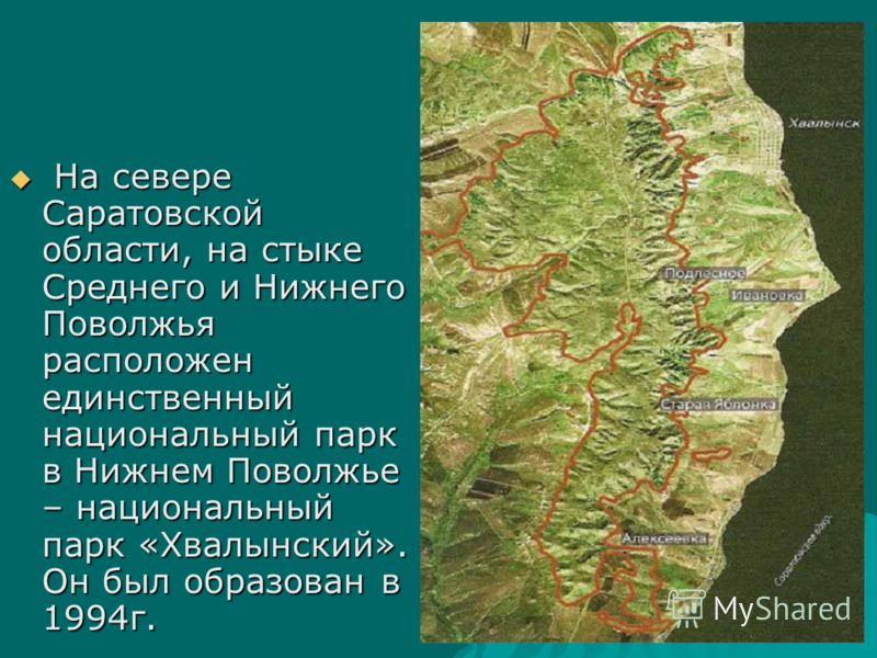 На севере Саратовской области, на стыке Среднего и Нижнего Поволжья расположен единственный национальный парк в Нижнем Поволжье – национальный парк «Хвалынский». Он был образован в 1994г. На севере Саратовской области, на стыке Среднего и Нижнего Пов
