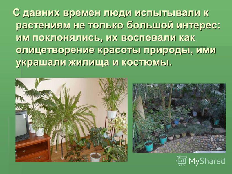 С давних времен люди испытывали к растениям не только большой интерес: им поклонялись, их воспевали как олицетворение красоты природы, ими украшали жилища и костюмы. С давних времен люди испытывали к растениям не только большой интерес: им поклонялис