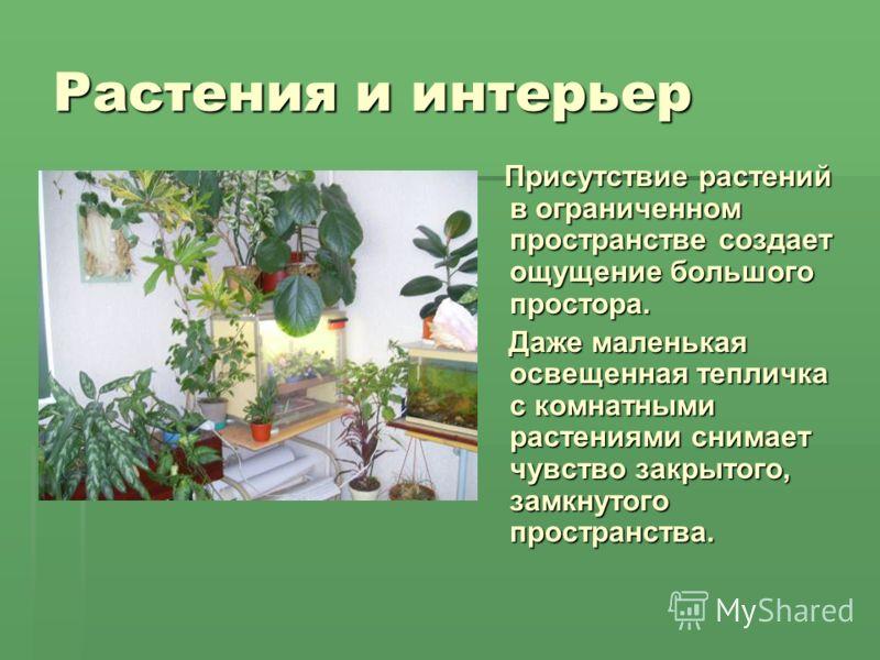 Растения и интерьер Присутствие растений в ограниченном пространстве создает ощущение большого простора. Присутствие растений в ограниченном пространстве создает ощущение большого простора. Даже маленькая освещенная тепличка с комнатными растениями с