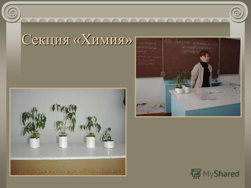 Секция «Химия»