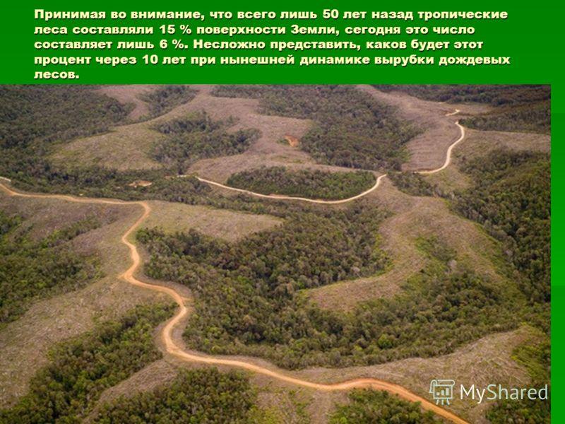 Принимая во внимание, что всего лишь 50 лет назад тропические леса составляли 15 % поверхности Земли, сегодня это число составляет лишь 6 %. Несложно представить, каков будет этот процент через 10 лет при нынешней динамике вырубки дождевых лесов.