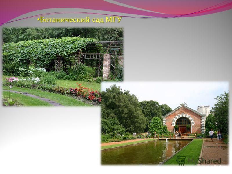 Ботанический сад МГУ Ботанический сад МГУ