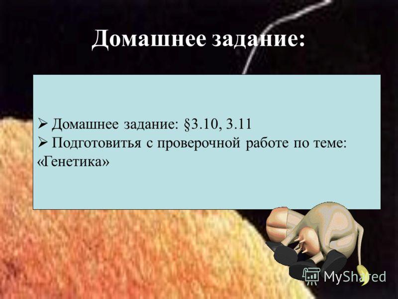 Домашнее задание: Домашнее задание: §3.10, 3.11 Подготовитья с проверочной работе по теме: «Генетика»
