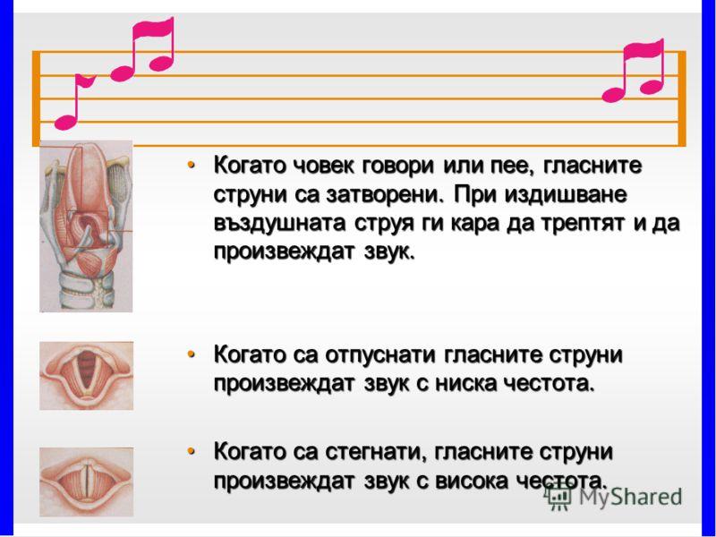 Когато човек говори или пее, гласните струни са затворени. При издишване въздушната струя ги кара да трептят и да произвеждат звук.Когато човек говори или пее, гласните струни са затворени. При издишване въздушната струя ги кара да трептят и да произ