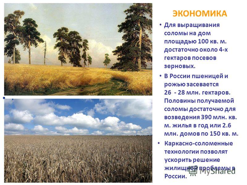 ЭКОНОМИКА Для выращивания соломы на дом площадью 100 кв. м. достаточно около 4-х гектаров посевов зерновых. В России пшеницей и рожью засевается 26 - 28 млн. гектаров. Половины получаемой соломы достаточно для возведения 390 млн. кв. м. жилья в год и