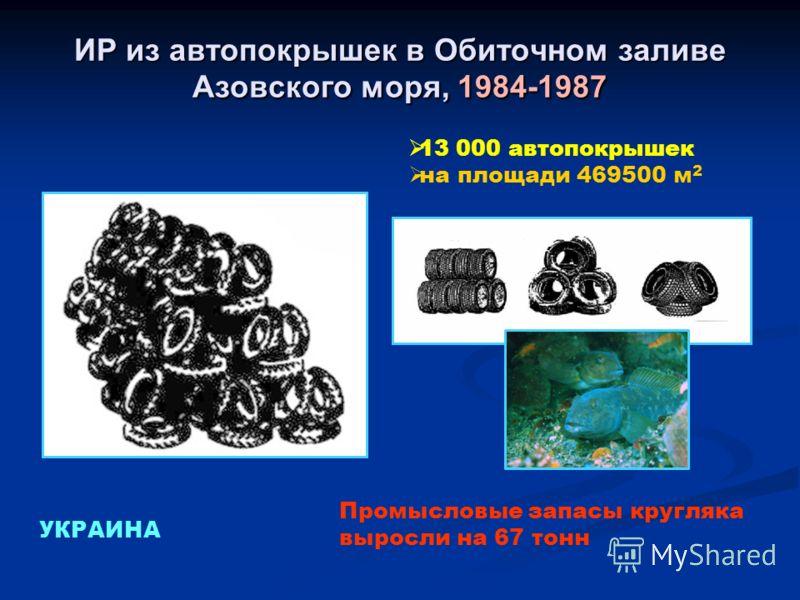ИР из автопокрышек в Обиточном заливе Азовского моря, 1984-1987 13 000 автопокрышек на площади 469500 м 2 УКРАИНА Промысловые запасы кругляка выросли на 67 тонн