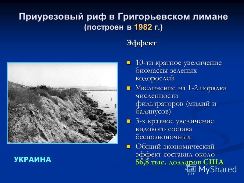 Приурезовый риф в Григорьевском лимане (построен в 1982 г.) Эффект 10-ти кратное увеличение биомассы зеленых водорослей Увеличение на 1-2 порядка численности фильтраторов (мидий и балянусов) 3-х кратное увеличение видового состава беспозвоночных Общи