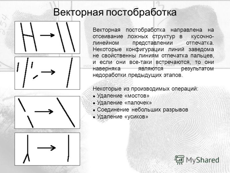 Векторная постобработка направлена на отсеивание ложных структур в кусочно- линейном представлении отпечатка. Некоторые конфигурации линий заведома не свойственны линиям отпечатка пальцев, и если они все-таки встречаются, то они наверняка являются ре