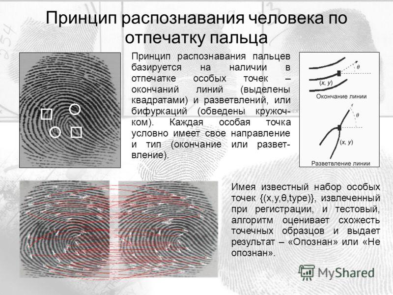 Принцип распознавания пальцев базируется на наличии в отпечатке особых точек – окончаний линий (выделены квадратами) и разветвлений, или бифуркаций (обведены кружоч- ком). Каждая особая точка условно имеет свое направление и тип (окончание или развет