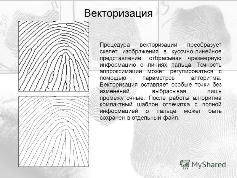 Процедура векторизации преобразует скелет изображения в кусочно-линейное представление, отбрасывая чрезмерную информацию о линиях пальца. Точность аппроксимации может регулироваться с помощью параметров алгоритма. Векторизация оставляет особые точки