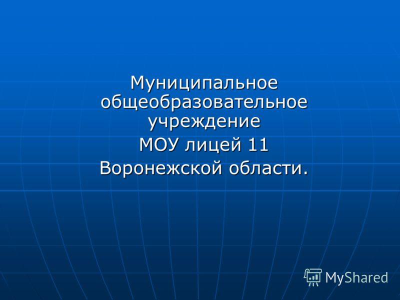 Муниципальное общеобразовательное учреждение МОУ лицей 11 Воронежской области.