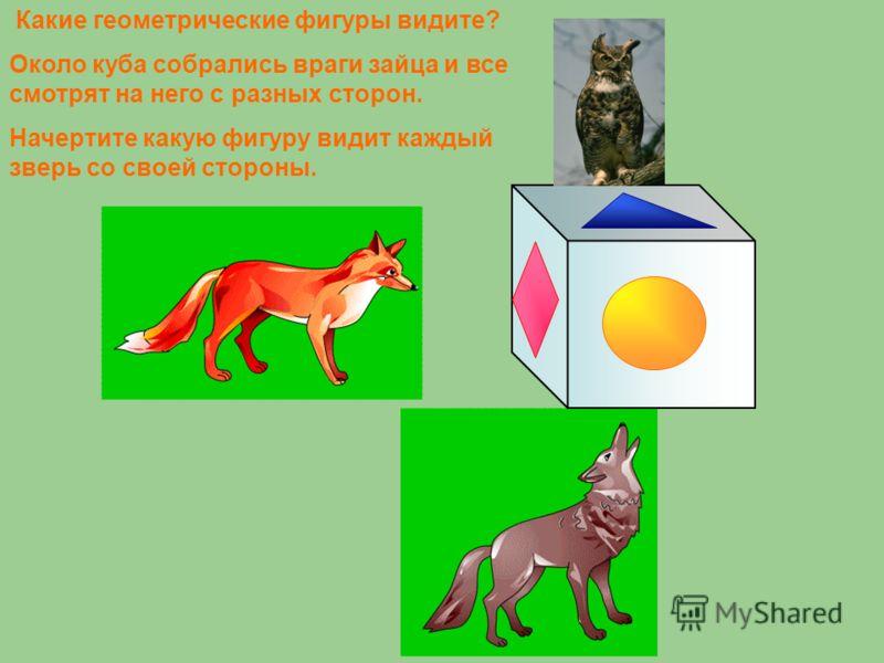 Какие геометрические фигуры видите? Около куба собрались враги зайца и все смотрят на него с разных сторон. Начертите какую фигуру видит каждый зверь со своей стороны.