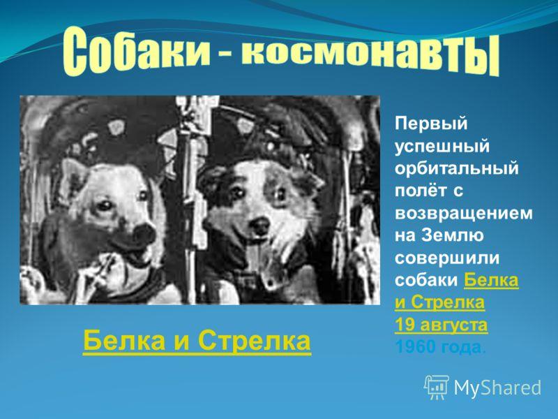 Первый успешный орбитальный полёт с возвращением на Землю совершили собаки Белка и СтрелкаБелка и Стрелка 19 августа 19 августа 1960 года. Белка и Стрелка