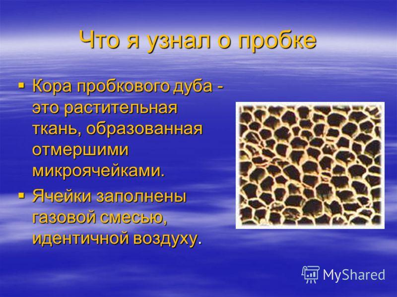 Что я узнал о пробке Кора пробкового дуба - это растительная ткань, образованная отмершими микроячейками. Кора пробкового дуба - это растительная ткань, образованная отмершими микроячейками. Ячейки заполнены газовой смесью, идентичной воздуху. Ячейки