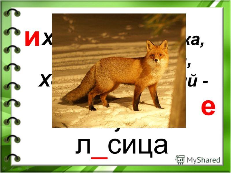 Комочек пуха, длинное ухо, Прыгает ловко, любит морковку. за_ц я и