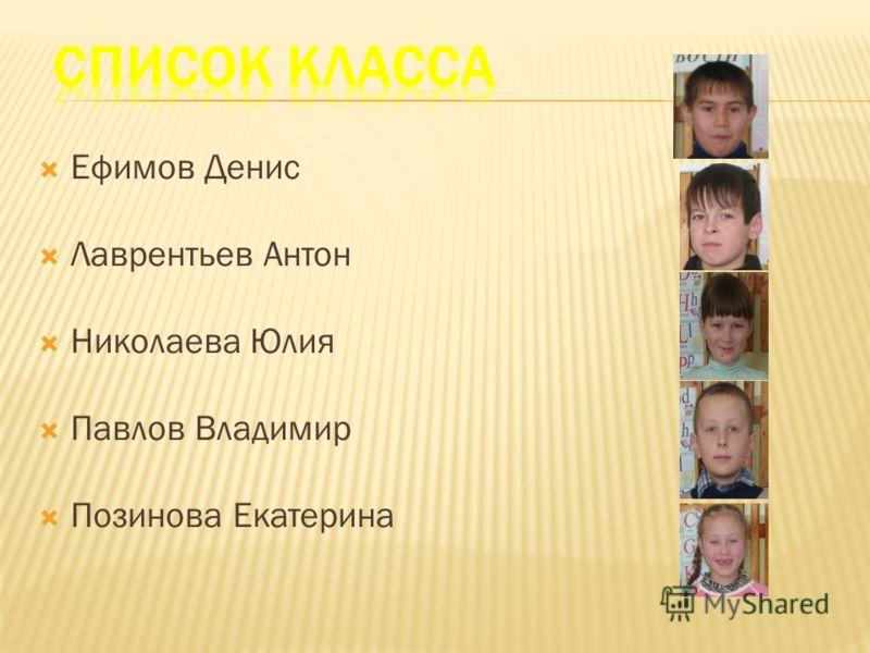 Ефимов Денис Лаврентьев Антон Николаева Юлия Павлов Владимир Позинова Екатерина