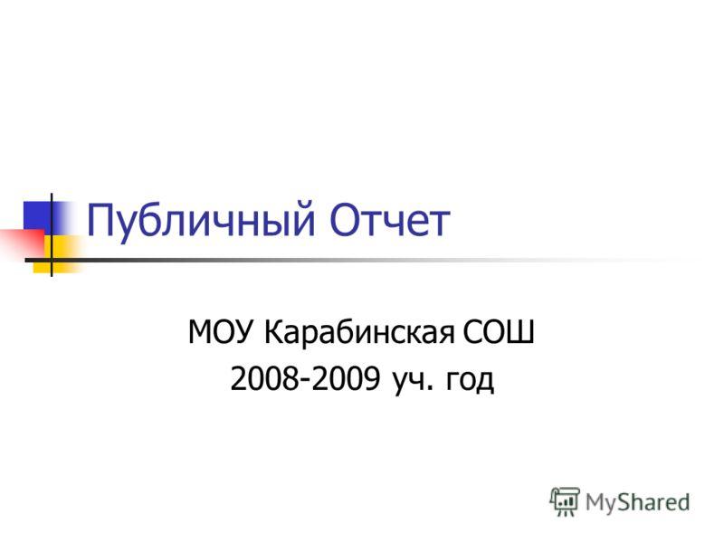Публичный Отчет МОУ Карабинская СОШ 2008-2009 уч. год