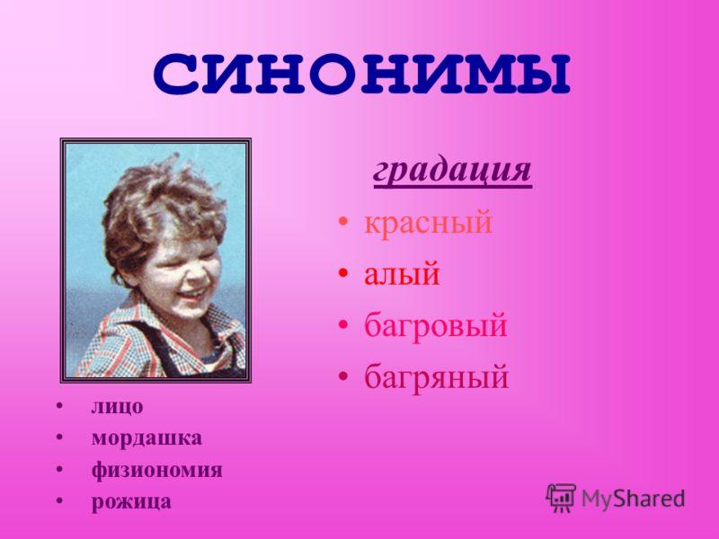 синонимы градация красный алый багровый багряный лицо мордашка физиономия рожица