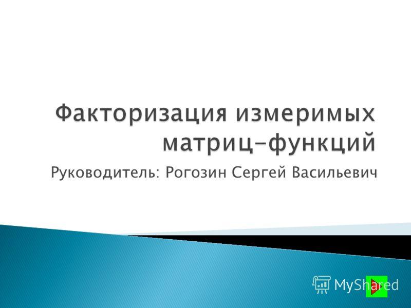 Руководитель: Рогозин Сергей Васильевич