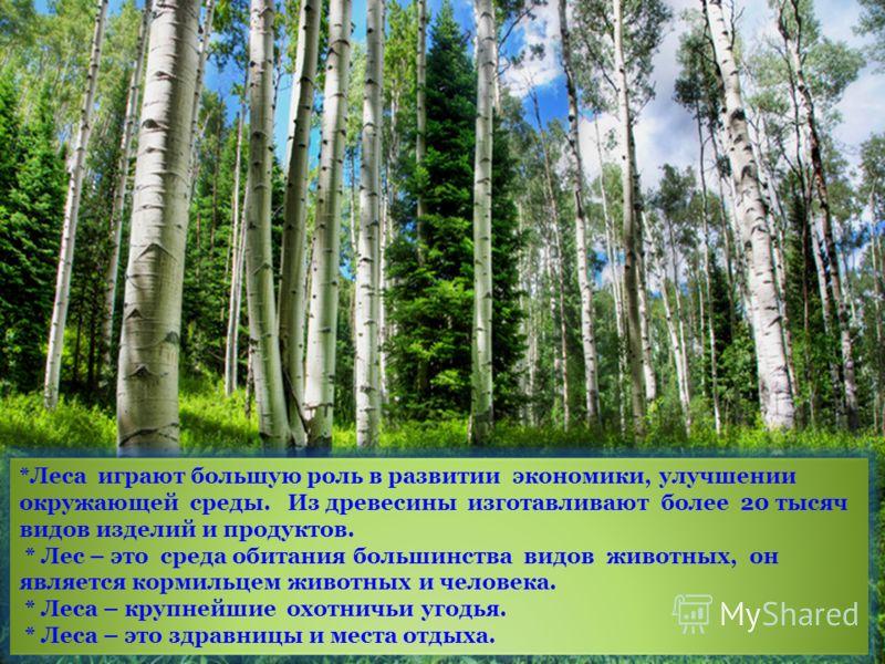 *Леса играют большую роль в развитии экономики, улучшении окружающей среды. Из древесины изготавливают более 20 тысяч видов изделий и продуктов. * Лес – это среда обитания большинства видов животных, он является кормильцем животных и человека. * Леса