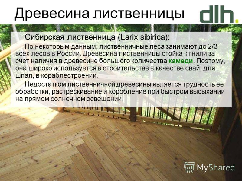 Древесина лиственницы Сибирская лиственница (Larix sibirica): По некоторым данным, лиственничные леса занимают до 2/3 всех лесов в России. Древесина лиственницы стойка к гнили за счет наличия в древесине большого количества камеди. Поэтому, она широк