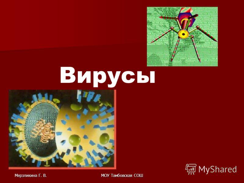 Мерзликина Г. В.МОУ Тамбовская СОШ Вирусы