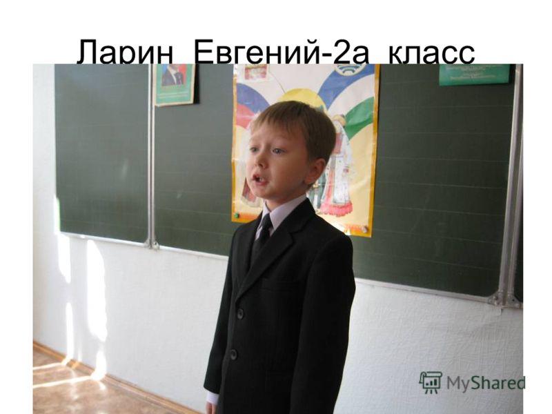Ларин Евгений-2а класс
