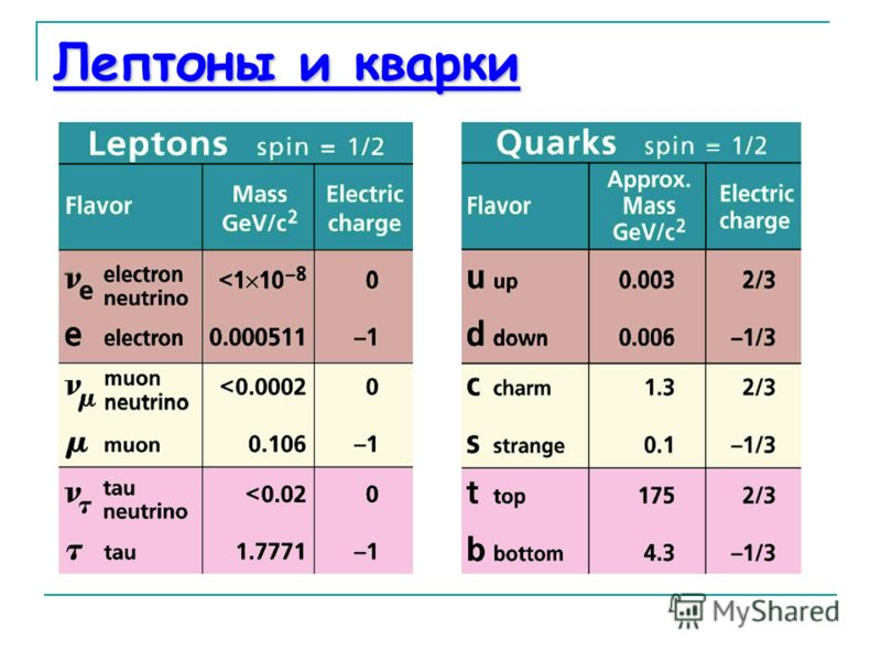 a study of quarks and leptons