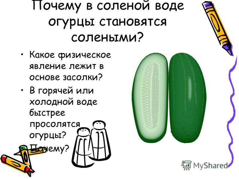 Почему в соленой воде огурцы становятся солеными? Какое физическое явление лежит в основе засолки? В горячей или холодной воде быстрее просолятся огурцы? Почему?